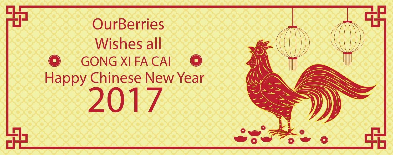 Chinese New Year 2017 Greeting